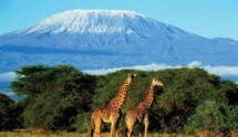 Uncharted Tanzania