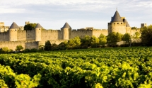 Castles and wines in France