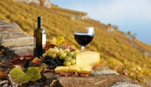 Wine & Gastronomy in France