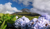 Azores Islands - the lost Paradise