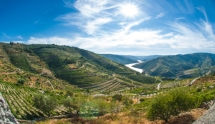 Wine Trails of Spain and Portugal