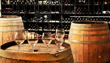 Wine Tour in Spain
